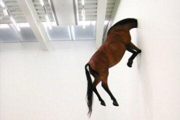 Cattelan-horseq