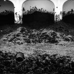 Art Safari > Santiago Sierra (1 de 3)