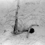 Carole Schnemann > Hasta incluyendo sus límites